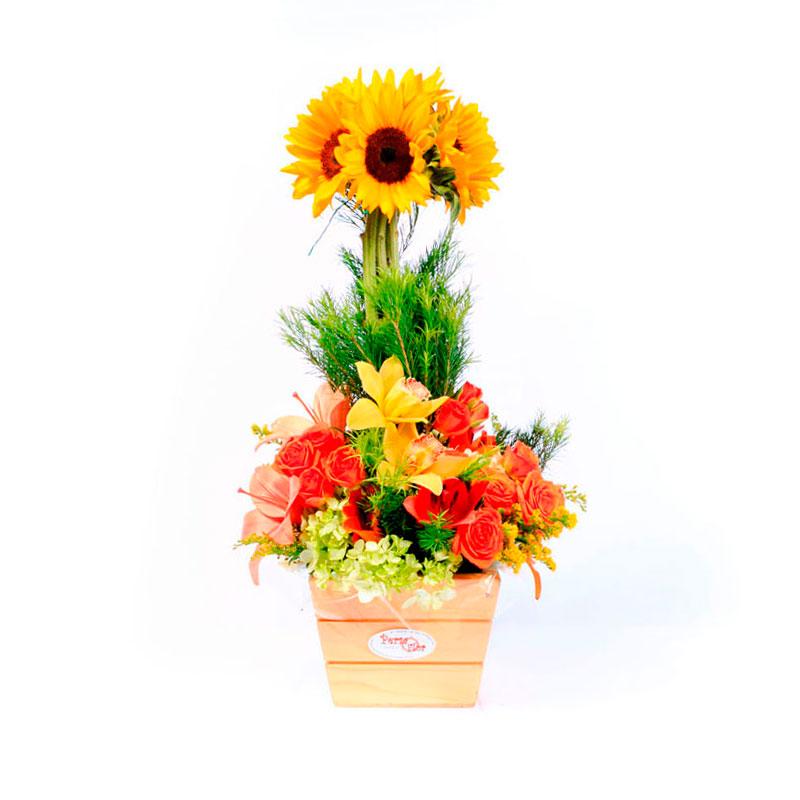 Arreglo Floral Girasoles Y Orquídeas